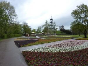Killesbergturm in the Distance