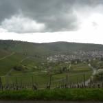 View into Stuttgart from stormy grape fields