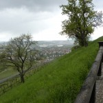 View into Stuttgart from the hill